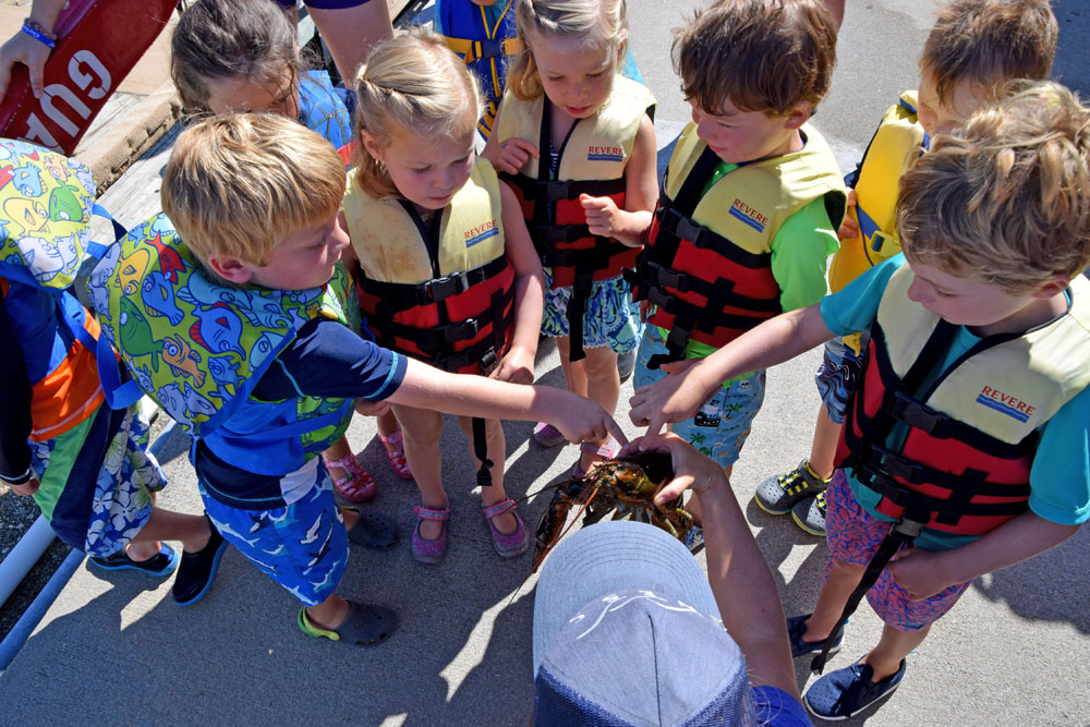 Youth Programs at New England Science & Sailing